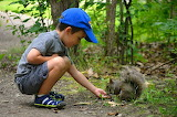 The child and the squirrel