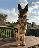 Big Boy Max