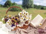 book & flowers