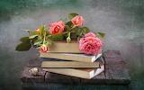 Románticos libros