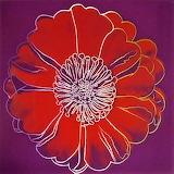 Flower head - Andy Warhol