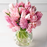 ^ Pink Hyacinths and Tulips