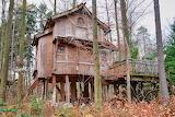 Treehouse-4707139 1920
