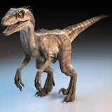 Render raptor signature image 1200x1200.jpg20d25b46-4738-4b67-b5