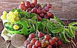 fruits 178