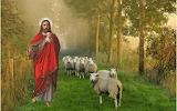 Lord-shepherd-sheep-christ-god-jesus-religion
