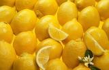 Lemons texture