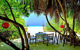 Lunch For Two on Secluded Island