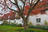 Essex Cottage
