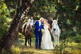 bride, groom and horses