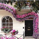 flowered front door