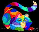 ^ Frisky Cat - Nick Gustafson