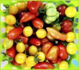 BasketOfTomatoes