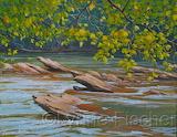 Chattahoochee Rapids by Lynne Fischer