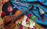 ~ Violin Music ~