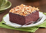 Chocolate cake with toasted coconut topping