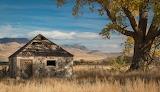 Near Carson City, Nevada