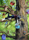 The Squirrel Tree ~ Joy Campbell