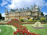 Castillo rodeado de flores