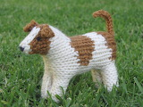 Knitted jack russell