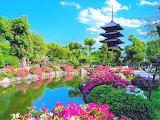 Temple garden, Japan