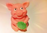 Pig marzipan pig funny