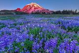 636605_mount-rainier-national-park_natsionalnyiy-park-ssh_2048x1