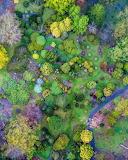 Aerial Mount Lofty Botanic Garden South Australia