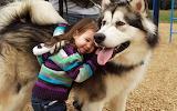 Amar a su mascota