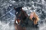 El caballo y su dueña