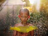 Boy, water, light, child, leaf, monk