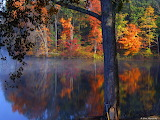 Fall colors and morning fog on the river