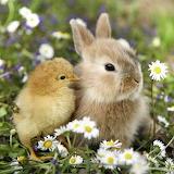 ❤️So Cute...