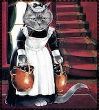 House Maid Cat