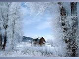 Winter-0010