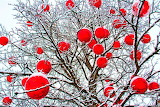 Tree with red balls