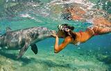 Nature, ocean, sea, girl, summer, dolphin, friendship