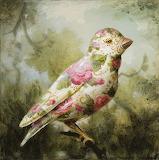 Teacup grosbeak, Kevin Sloane