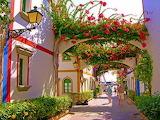 Grand Canary Island1