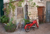 2801769-red-vintage-italian-moped-in-old-courtyard-basilicata-it