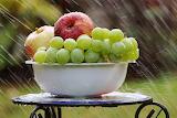 Fruits in the rain