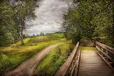 farm-landscape-jersey-crops-mike-savad