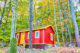 red cabin in the woods