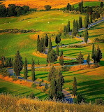 Rural road Tuscany Italy