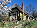 Spring-garden-in-England