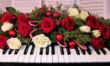 #Christmas Roses on the Piano