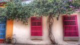 ^ Hot pink window shutters in Cartagena, Columbia
