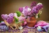 still life, lilacs