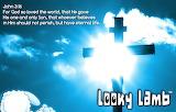Looky Lamb Cross