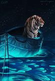 Midnight Sailing